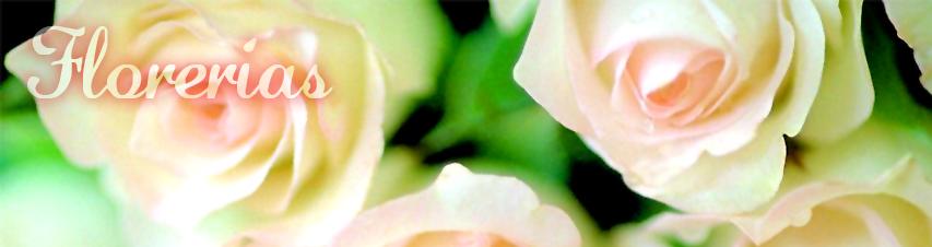 Contacto Florerías La Boutique de la Mariée